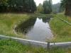 Teich 1