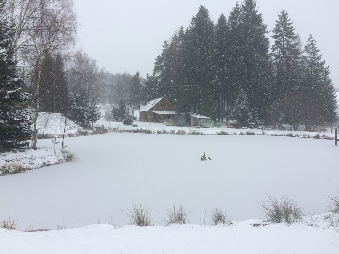Winter 2019/20  Waldviertler Krebszucht